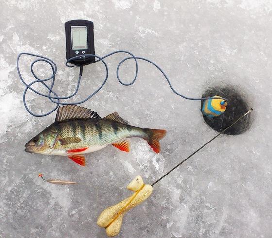 экраны для рыбалки видео
