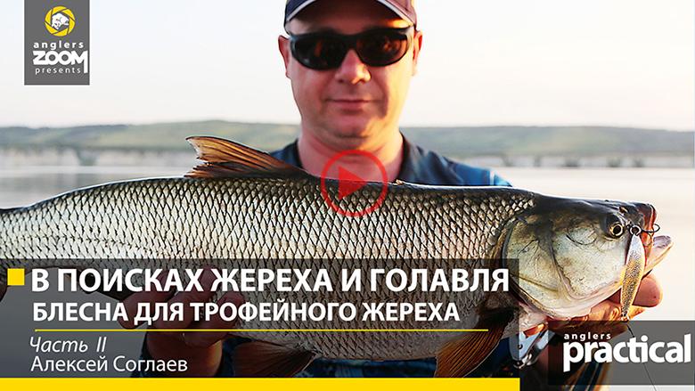рыбалка на волге на жереха видео