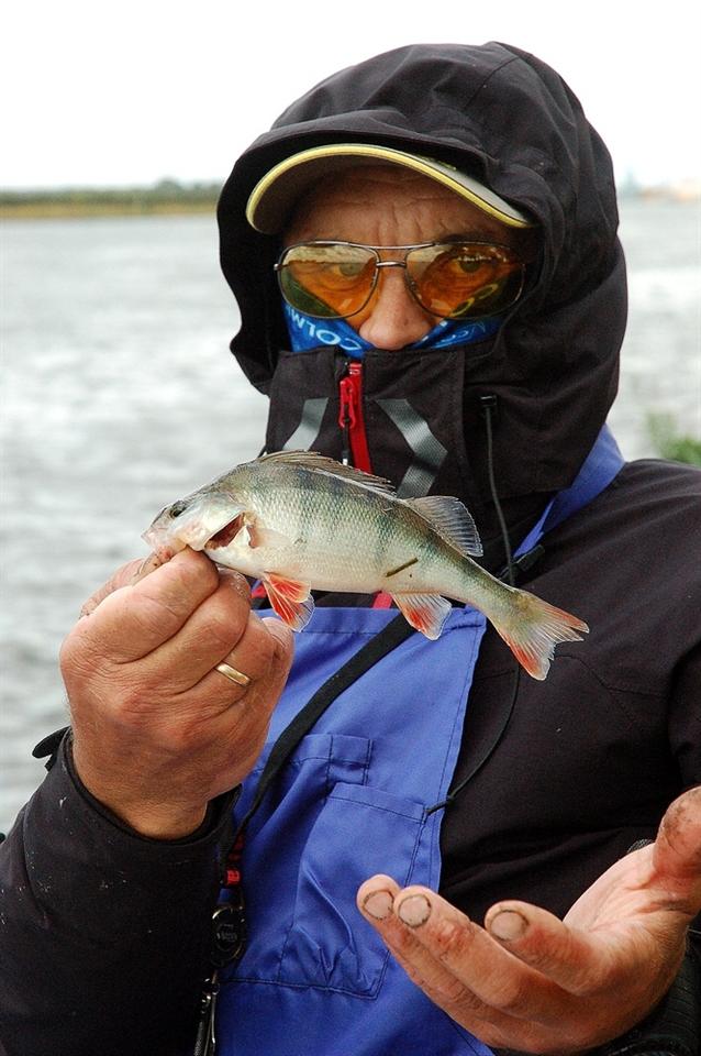 только фидерная рыбалка 2015