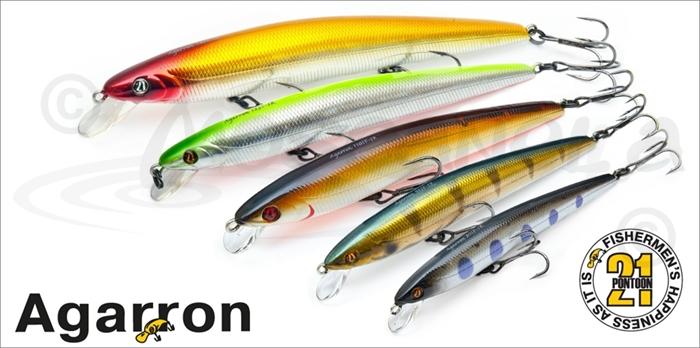 Изображение Pontoon21 Agarron