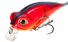 Owner/C'ultiva Bug Eye Bait