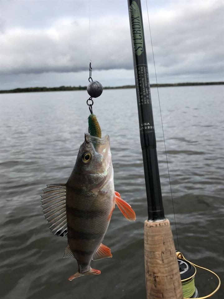 Рыболовные базы на Иваньковском водохранилище, Все для рыболова и рыбалки